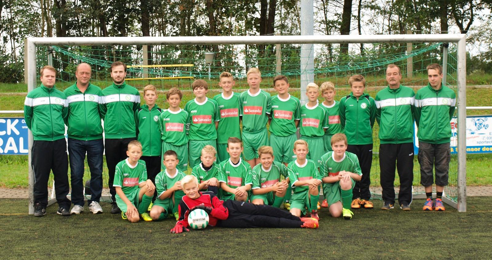 Mannschaftsfoto D-Junioren Kreisoberliga 2015